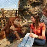Zoom - Zoo für Kinder